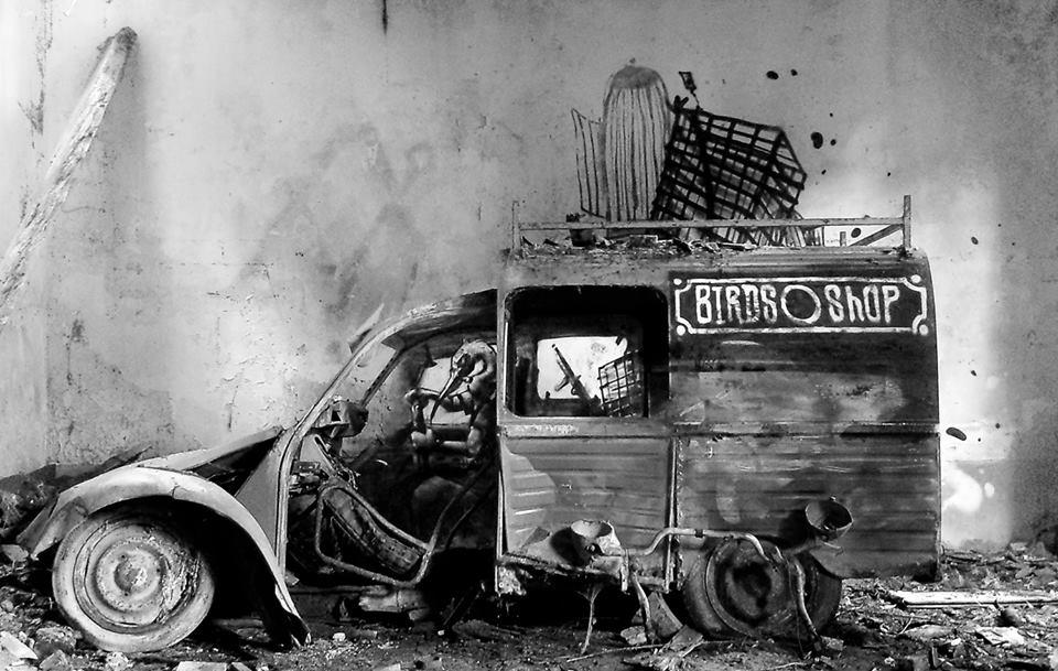 birdshop